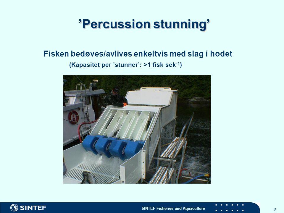 SINTEF Fisheries and Aquaculture 9 Mulige bedøvelsesmetoder Elektrisk bedøving Individuelt eller i bulk Kontroll over viktige parametere (spenning, strøm, frekvens, tid…) av avgjørende betydning .