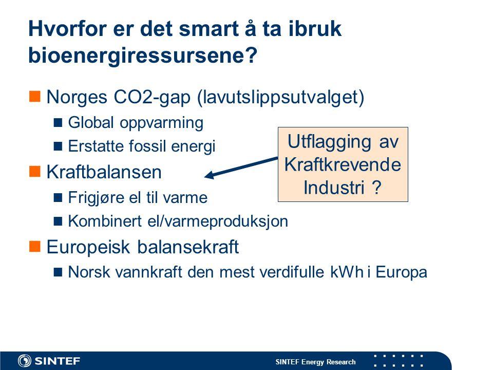 SINTEF Energy Research Pelletssalget i Norge