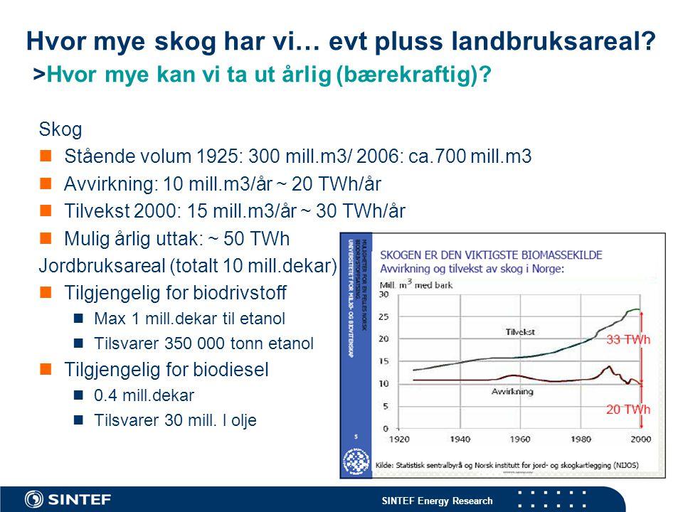 SINTEF Energy Research Hvor mye skog har vi… evt pluss landbruksareal? >Hvor mye kan vi ta ut årlig (bærekraftig)? Skog Stående volum 1925: 300 mill.m