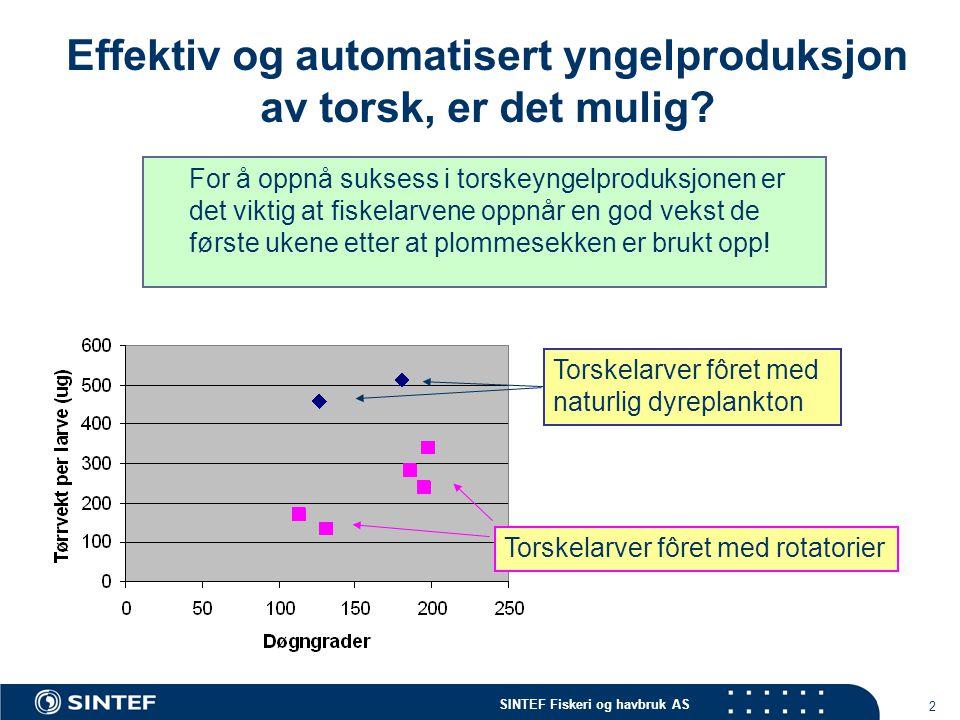 SINTEF Fiskeri og havbruk AS 2 Effektiv og automatisert yngelproduksjon av torsk, er det mulig? For å oppnå suksess i torskeyngelproduksjonen er det v