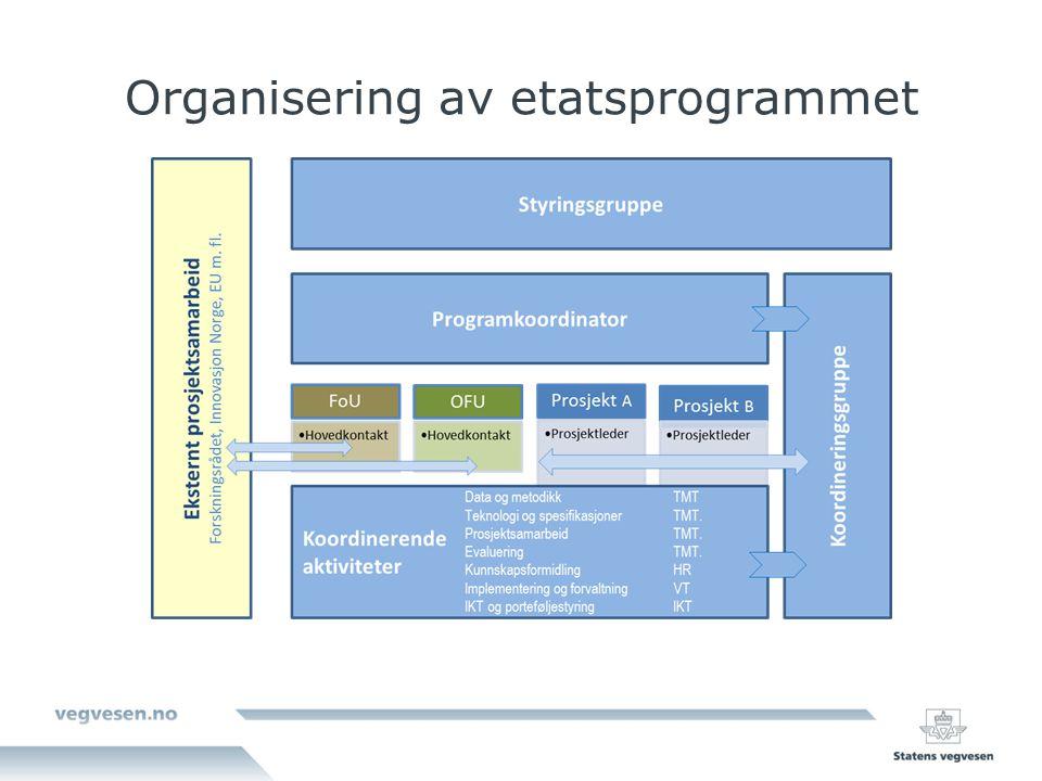 Organisering av etatsprogrammet