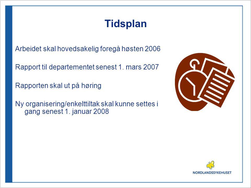 Tidsplan Arbeidet skal hovedsakelig foregå høsten 2006 Rapport til departementet senest 1. mars 2007 Rapporten skal ut på høring Ny organisering/enkel