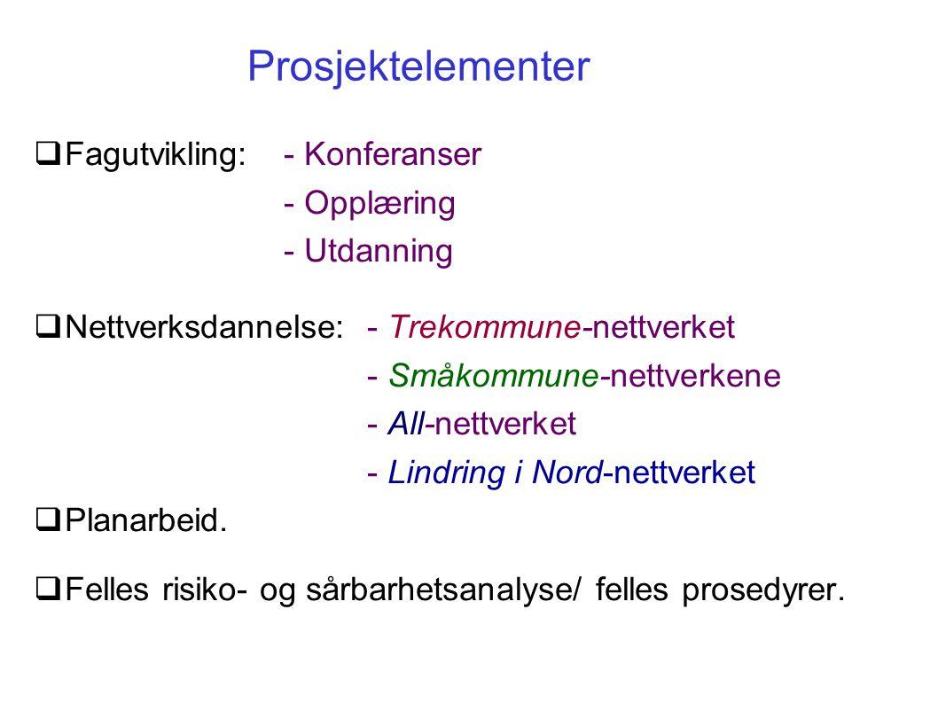 Prosjektelementer  Fagutvikling: - Konferanser - Opplæring - Utdanning  Nettverksdannelse:- Trekommune-nettverket - Småkommune-nettverkene - All-net