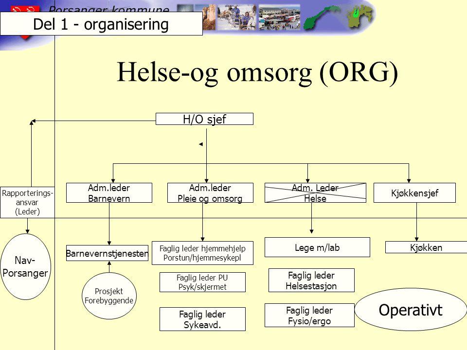 Helse-og omsorg (ORG) H/O sjef Adm.leder Barnevern Adm.leder Pleie og omsorg Adm.