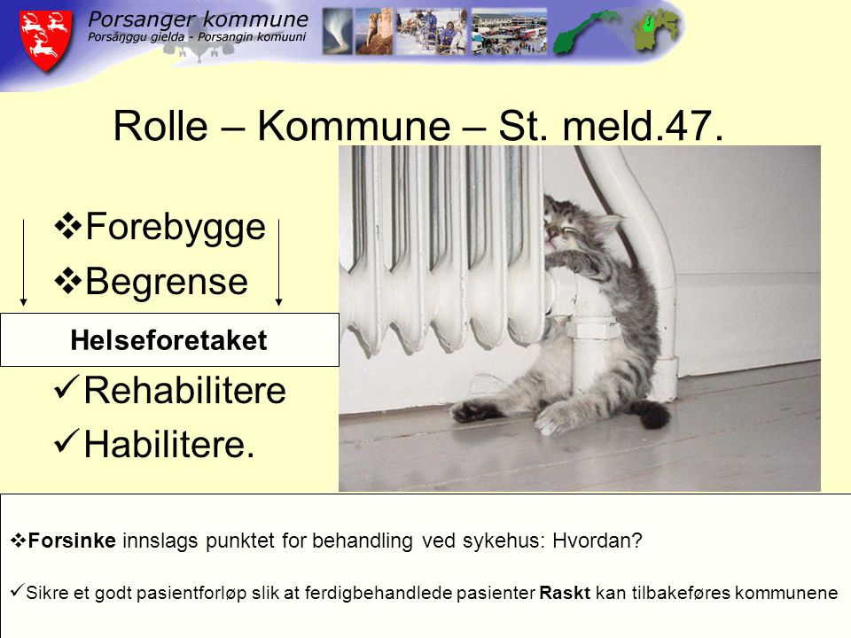 Rolle – Kommune – St. meld.47.  Forebygge  Begrense Rehabilitere Habilitere.  Forsinke innslags punktet for behandling ved sykehus: Hvordan? Sikre