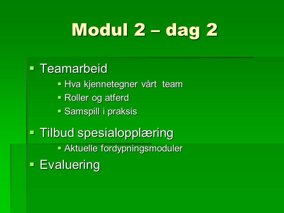 Modul 2 – dag 2  Teamarbeid  Hva kjennetegner vårt team  Roller og atferd  Samspill i praksis  Tilbud spesialopplæring  Aktuelle fordypningsmoduler  Evaluering