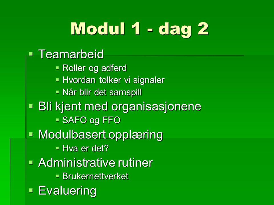 Modul 1 - dag 2  Teamarbeid  Roller og adferd  Hvordan tolker vi signaler  Når blir det samspill  Bli kjent med organisasjonene  SAFO og FFO  Modulbasert opplæring  Hva er det.