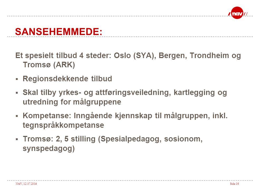 NAV, 12.07.2014Side 16 SANSEHEMMEDE: Et spesielt tilbud 4 steder: Oslo (SYA), Bergen, Trondheim og Tromsø (ARK)  Regionsdekkende tilbud  Skal tilby