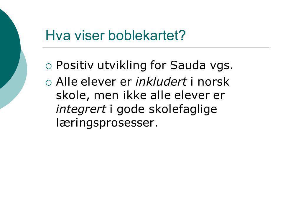 Hva viser boblekartet?  Positiv utvikling for Sauda vgs.  Alle elever er inkludert i norsk skole, men ikke alle elever er integrert i gode skolefagl