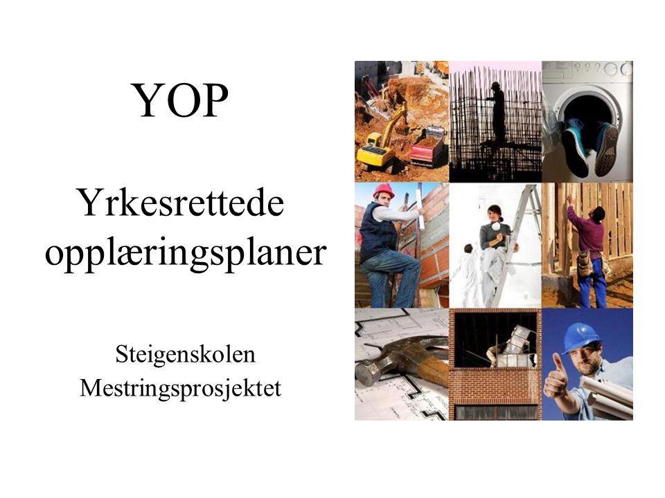 YOP Yrkesrettede opplæringsplaner Steigenskolen Mestringsprosjektet