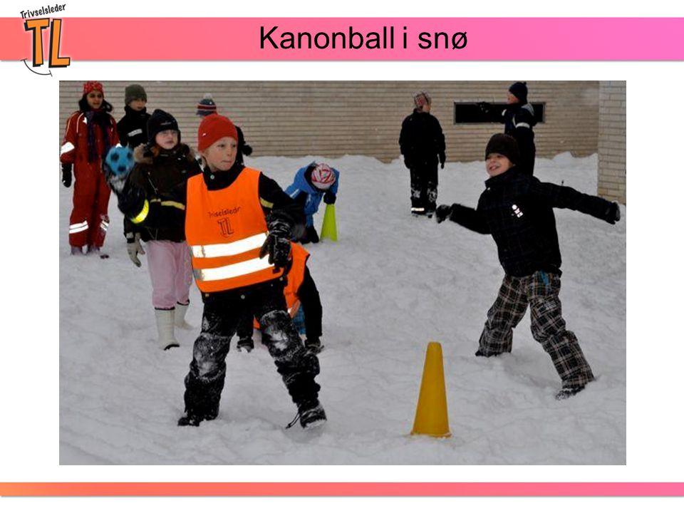 Kanonball i snø