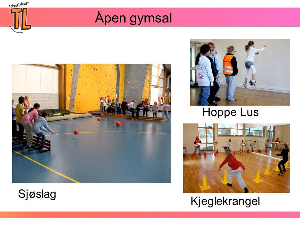 Åpen gymsal Sjøslag Kjeglekrangel Hoppe Lus