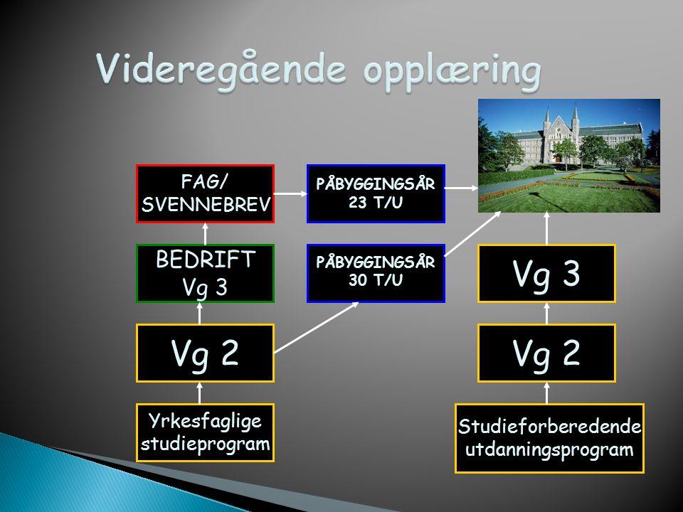 Vg1 = Videregående trinn 1 (1.