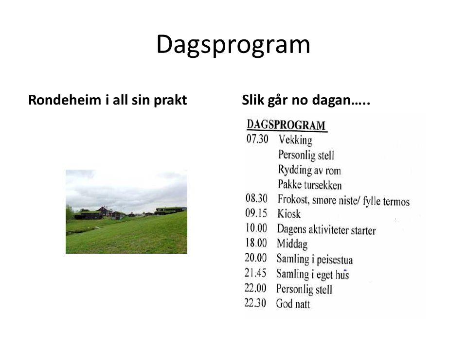Dagsprogram Rondeheim i all sin praktSlik går no dagan…..