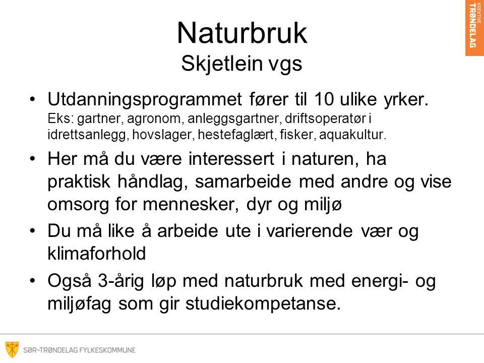 Naturbruk Skjetlein vgs Utdanningsprogrammet fører til 10 ulike yrker.