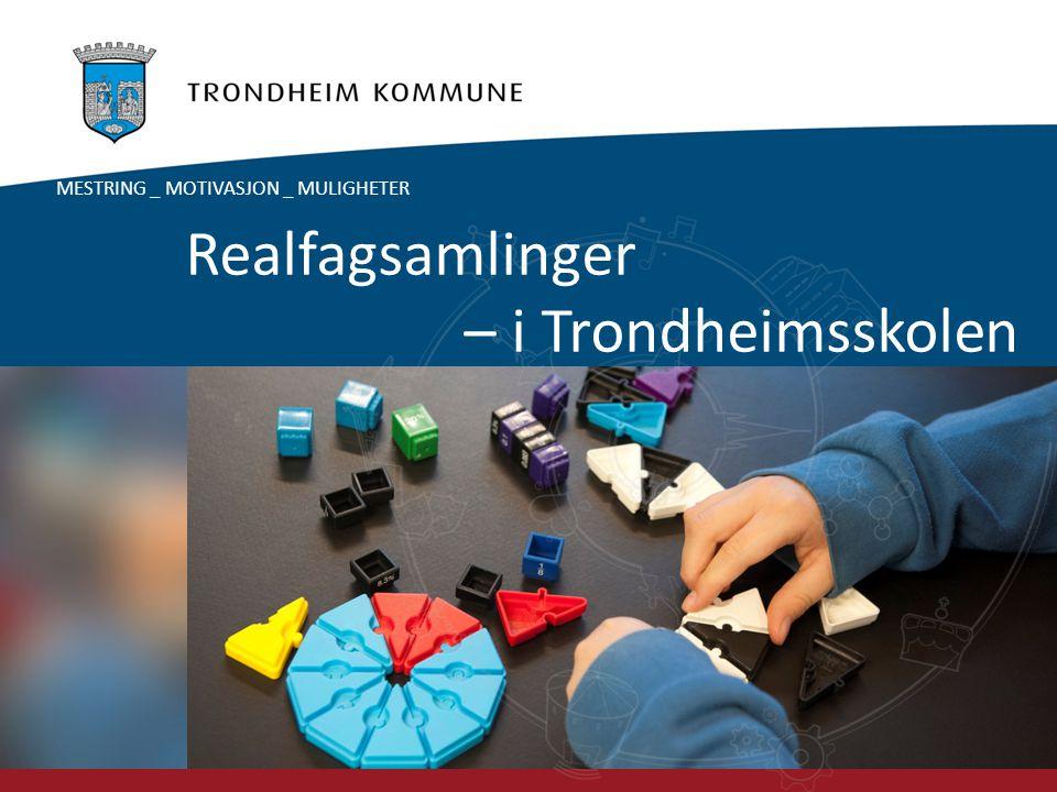 Foto: Carl-Erik Eriksson Realfagsamlinger – i Trondheimsskolen MESTRING _ MOTIVASJON _ MULIGHETER