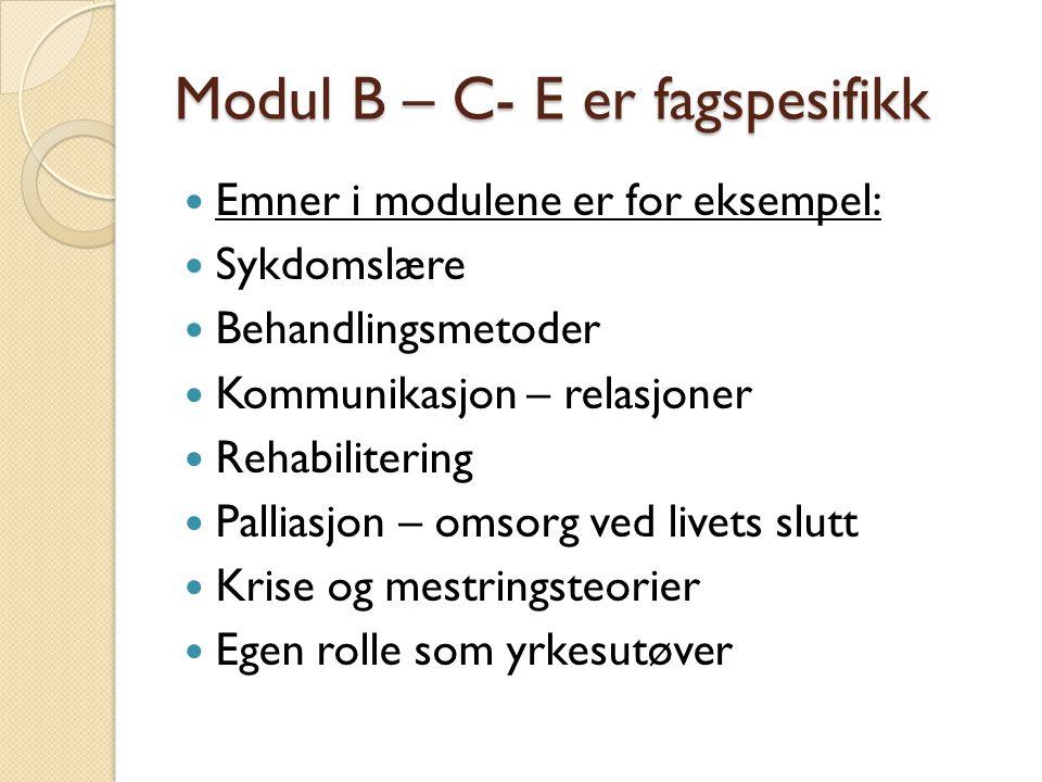 Modul B – C- E er fagspesifikk Emner i modulene er for eksempel: Sykdomslære Behandlingsmetoder Kommunikasjon – relasjoner Rehabilitering Palliasjon – omsorg ved livets slutt Krise og mestringsteorier Egen rolle som yrkesutøver