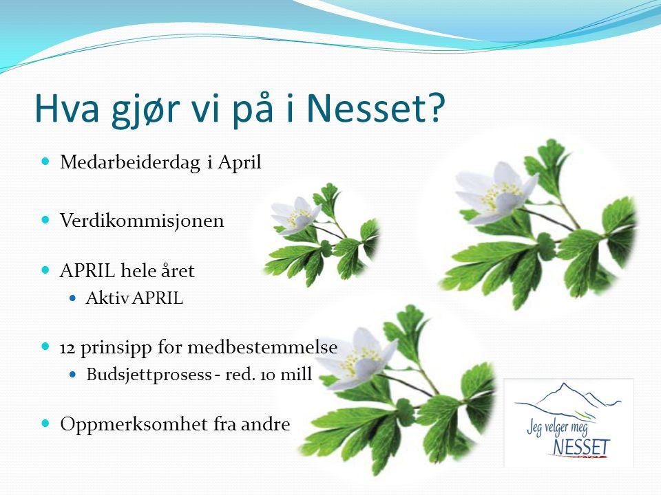 Hva gjør vi på i Nesset? Medarbeiderdag i April Verdikommisjonen APRIL hele året Aktiv APRIL 12 prinsipp for medbestemmelse Budsjettprosess - red. 10