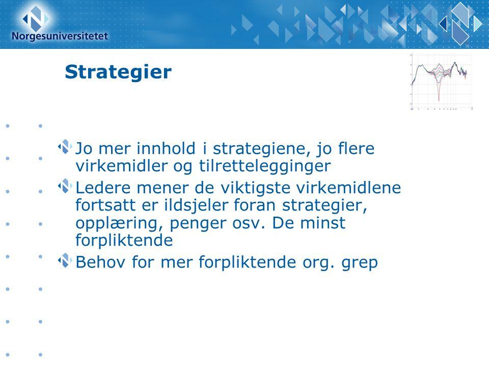 Strategier Jo mer innhold i strategiene, jo flere virkemidler og tilrettelegginger Ledere mener de viktigste virkemidlene fortsatt er ildsjeler foran