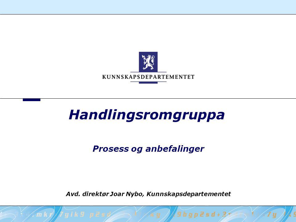 Handlingsromgruppa Prosess og anbefalinger Avd. direktør Joar Nybo, Kunnskapsdepartementet