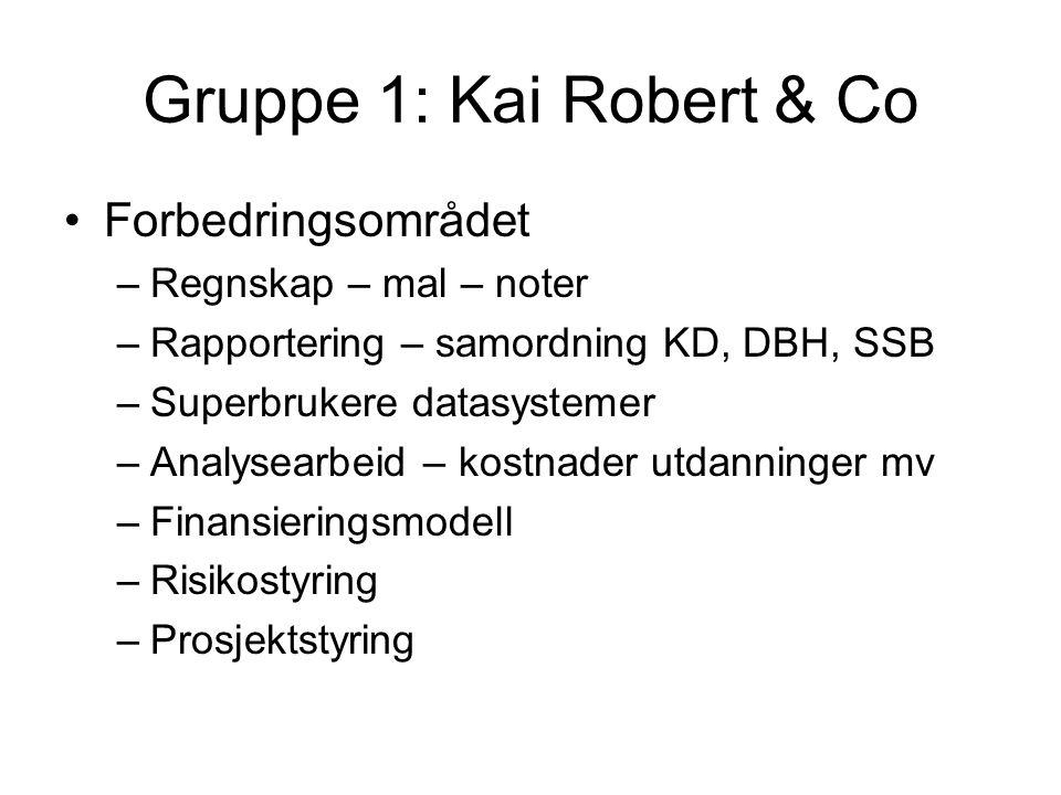 Gruppe 1: Kai Robert & Co Forbedringsområdet –Regnskap – mal – noter –Rapportering – samordning KD, DBH, SSB –Superbrukere datasystemer –Analysearbeid – kostnader utdanninger mv –Finansieringsmodell –Risikostyring –Prosjektstyring