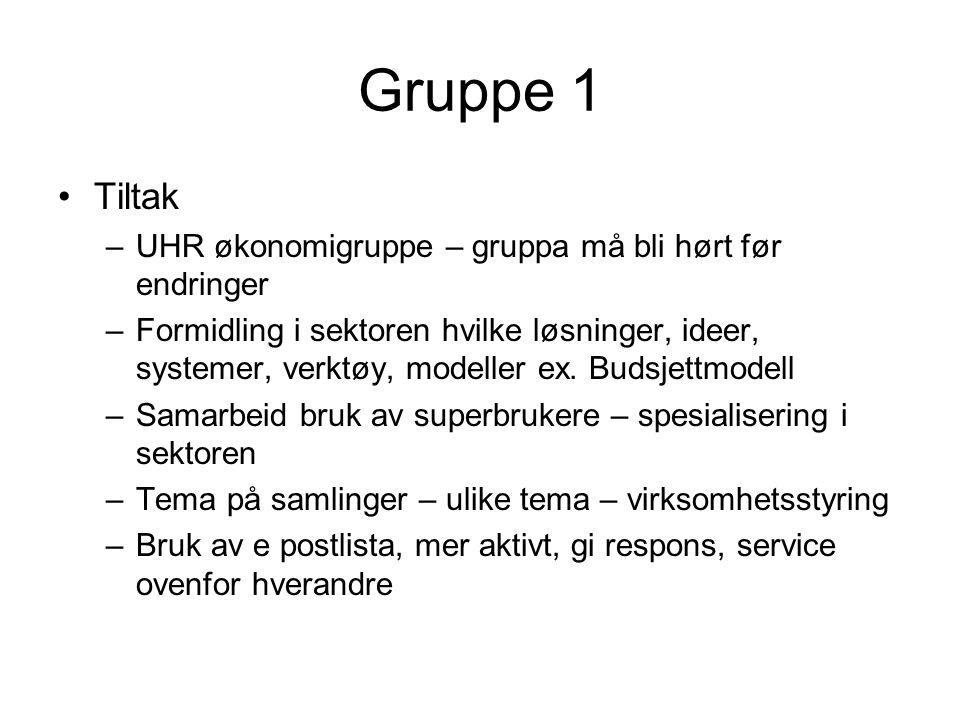 Gruppe 1 Tiltak –UHR økonomigruppe – gruppa må bli hørt før endringer –Formidling i sektoren hvilke løsninger, ideer, systemer, verktøy, modeller ex.