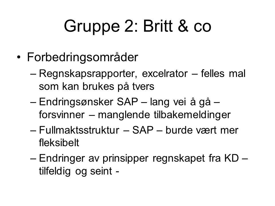 Gruppe 2: Britt & co Forbedringsområder –Regnskapsrapporter, excelrator – felles mal som kan brukes på tvers –Endringsønsker SAP – lang vei å gå – forsvinner – manglende tilbakemeldinger –Fullmaktsstruktur – SAP – burde vært mer fleksibelt –Endringer av prinsipper regnskapet fra KD – tilfeldig og seint -