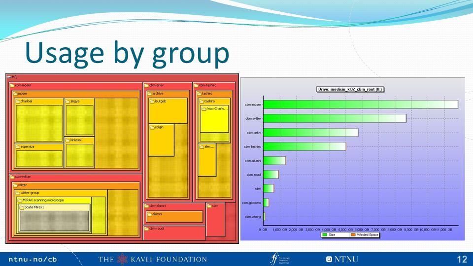 NTNU, May 2009 ntnu.no/cb m 12 Usage by group