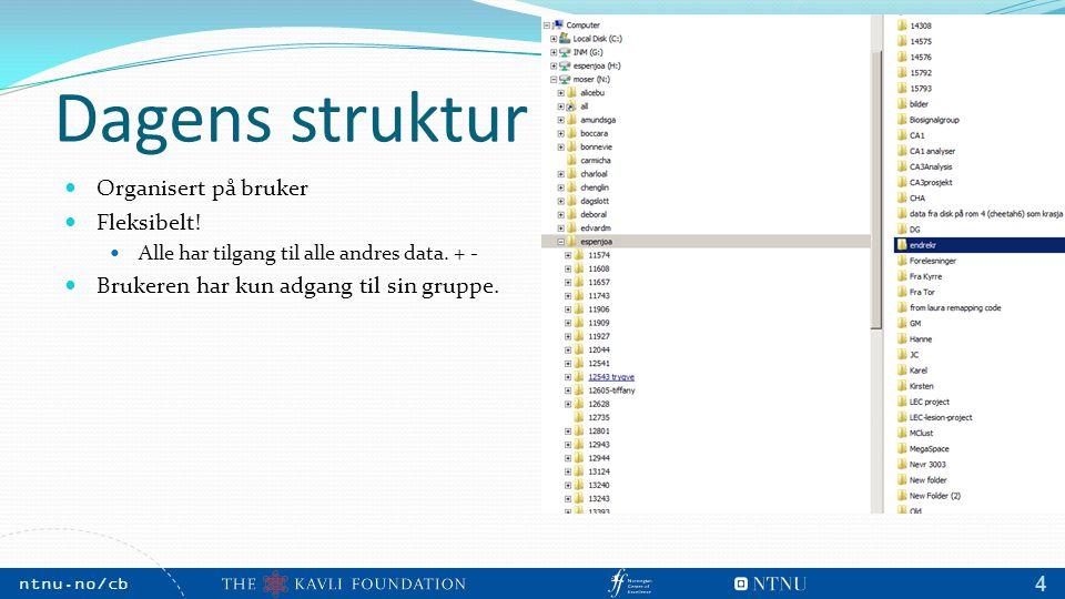 NTNU, May 2009 ntnu.no/cb m 4 Dagens struktur Organisert på bruker Fleksibelt! Alle har tilgang til alle andres data. + - Brukeren har kun adgang til