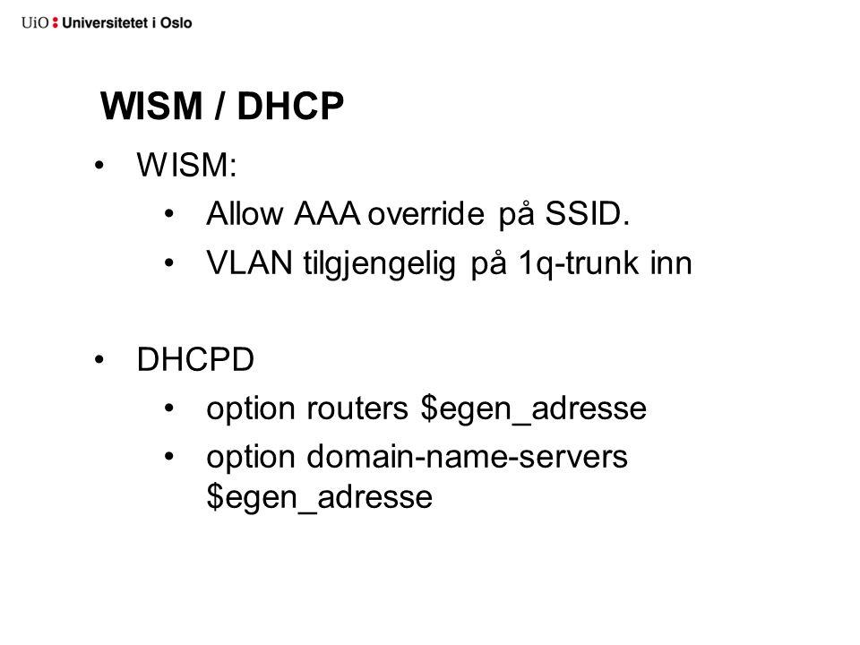 Enkel variant av Net::DNS::Nameserver.Svarer foo.tld is an alias for wireless-quarantine.uio.no.