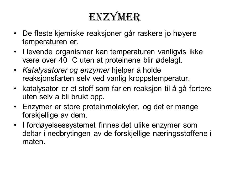 Enzymer De fleste kjemiske reaksjoner går raskere jo høyere temperaturen er. I levende organismer kan temperaturen vanligvis ikke være over 40 ˚C uten