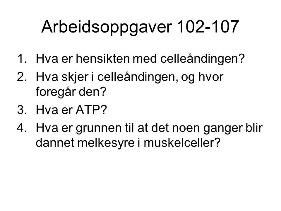 Arbeidsoppgaver 102-107 1.Hva er hensikten med celleåndingen? 2.Hva skjer i celleåndingen, og hvor foregår den? 3.Hva er ATP? 4.Hva er grunnen til at