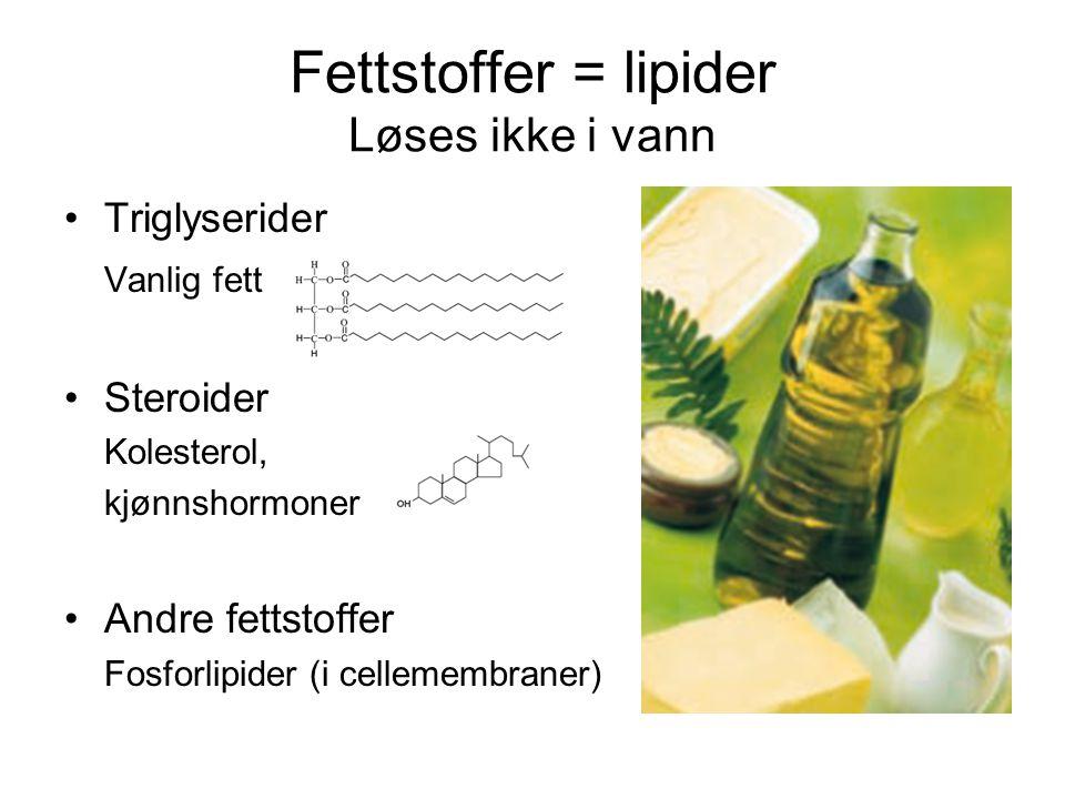 Fettstoffer = lipider Løses ikke i vann Triglyserider Vanlig fett Steroider Kolesterol, kjønnshormoner Andre fettstoffer Fosforlipider (i cellemembran