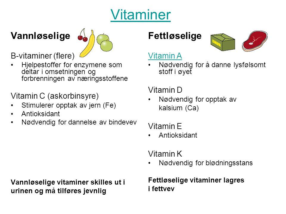 Vitaminer Vannløselige B-vitaminer (flere) Hjelpestoffer for enzymene som deltar i omsetningen og forbrenningen av næringsstoffene Vitamin C (askorbin