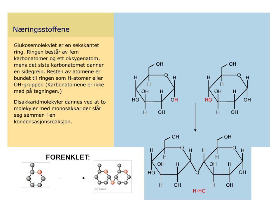 Proteiner – verktøy og byggematerialer Gir energi Transport Hemoglobin frakter oksygen Struktur og styrke hud, sener, hår, negler, muskler Enzymer ( Verktøy ) katalysatorer i celler Bevegelse Muskelfibre Signalstoffer Insulin (hormon) som regulerer sukkerinnhold i blodet