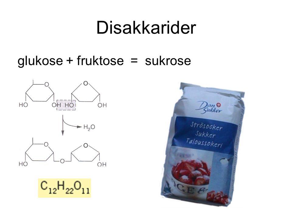 Disakkarider C 12 H 22 O 11 Sukrose (rørsukker) Laktose (melkesukker) Maltose (maltsukker)