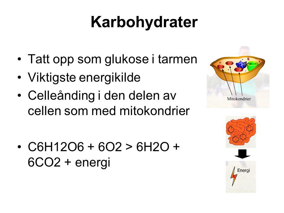Tatt opp som glukose i tarmen Viktigste energikilde Celleånding i den delen av cellen som med mitokondrier C6H12O6 + 6O2 > 6H2O + 6CO2 + energi Karboh