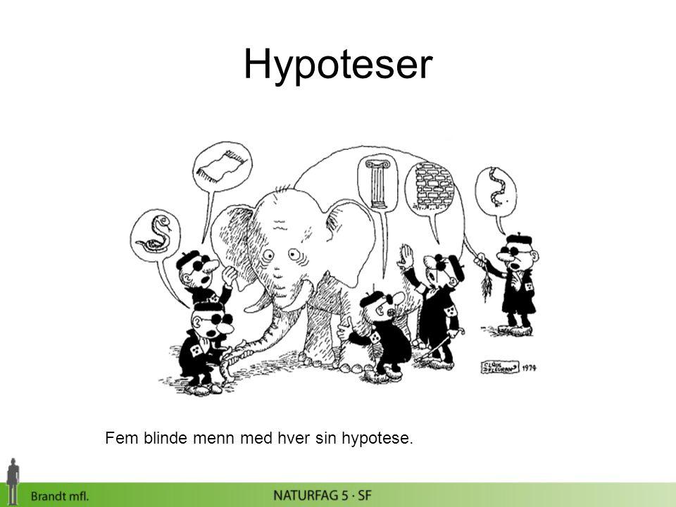 Fem blinde menn med hver sin hypotese. Hypoteser
