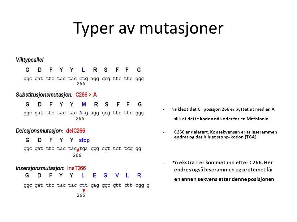 Typer av mutasjoner - Nukleotidet C i posisjon 266 er byttet ut med en A slik at dette kodon nå koder for en Methionin -C266 er deletert. Konsekvensen