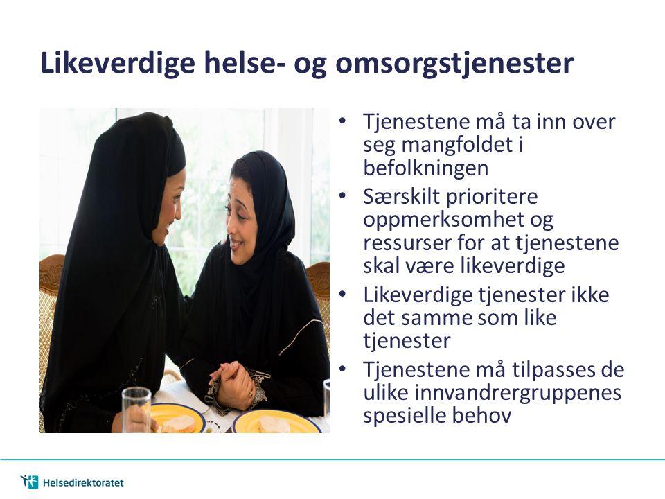 Tilgjengelige helse- og omsorgstjenester Sikre god kjennskap til helse- og omsorgstjenestene Sikre at brukere/pasienter og pårørende har tilstrekkelig kunnskap om rettigheter Språklig tilrettelegging Helsepersonells holdninger til innvandrere og kunnskap om migrasjon og helse
