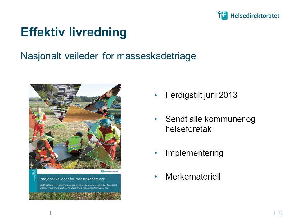 || Nasjonalt veileder for masseskadetriage 12 Ferdigstilt juni 2013 Sendt alle kommuner og helseforetak Implementering Merkemateriell Effektiv livredn
