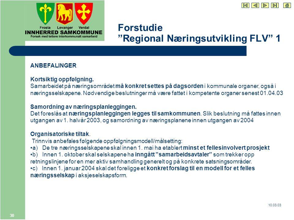 10.03.03 30 Forstudie Regional Næringsutvikling FLV 1 ANBEFALINGER Kortsiktig oppfølgning.
