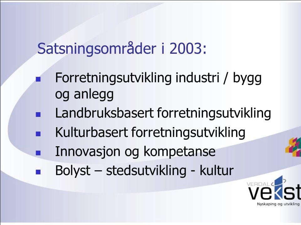 Satsningsområder i 2003: Forretningsutvikling industri / bygg og anlegg Landbruksbasert forretningsutvikling Kulturbasert forretningsutvikling Innovasjon og kompetanse Bolyst – stedsutvikling - kultur