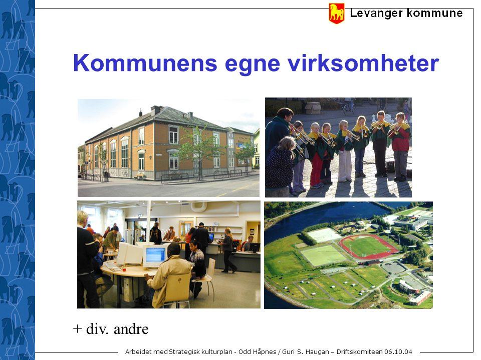 Arbeidet med Strategisk kulturplan - Odd Håpnes / Guri S. Haugan – Driftskomiteen 06.10.04 Kommunens egne virksomheter + div. andre