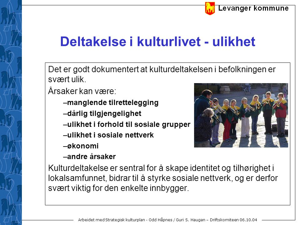 Arbeidet med Strategisk kulturplan - Odd Håpnes / Guri S. Haugan – Driftskomiteen 06.10.04 Deltakelse i kulturlivet - ulikhet Det er godt dokumentert
