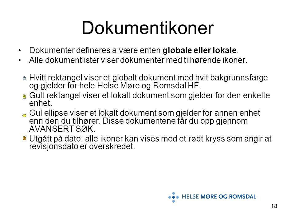 18 Dokumentikoner Dokumenter defineres å være enten globale eller lokale. Alle dokumentlister viser dokumenter med tilhørende ikoner. Hvitt rektangel