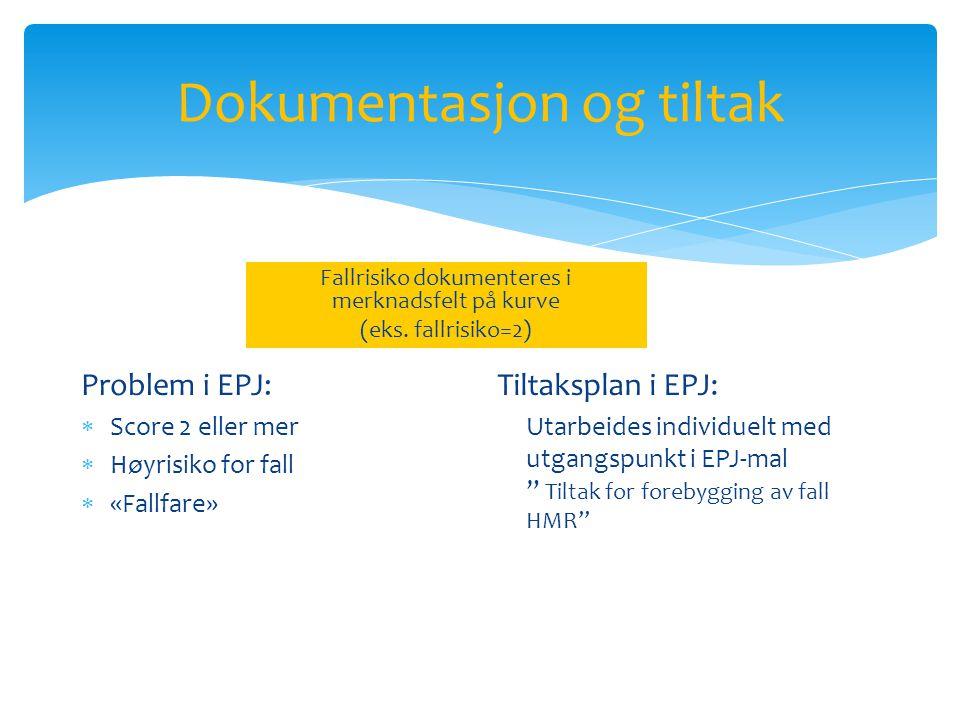 Dokumentasjon og tiltak Fallrisiko dokumenteres i merknadsfelt på kurve (eks.