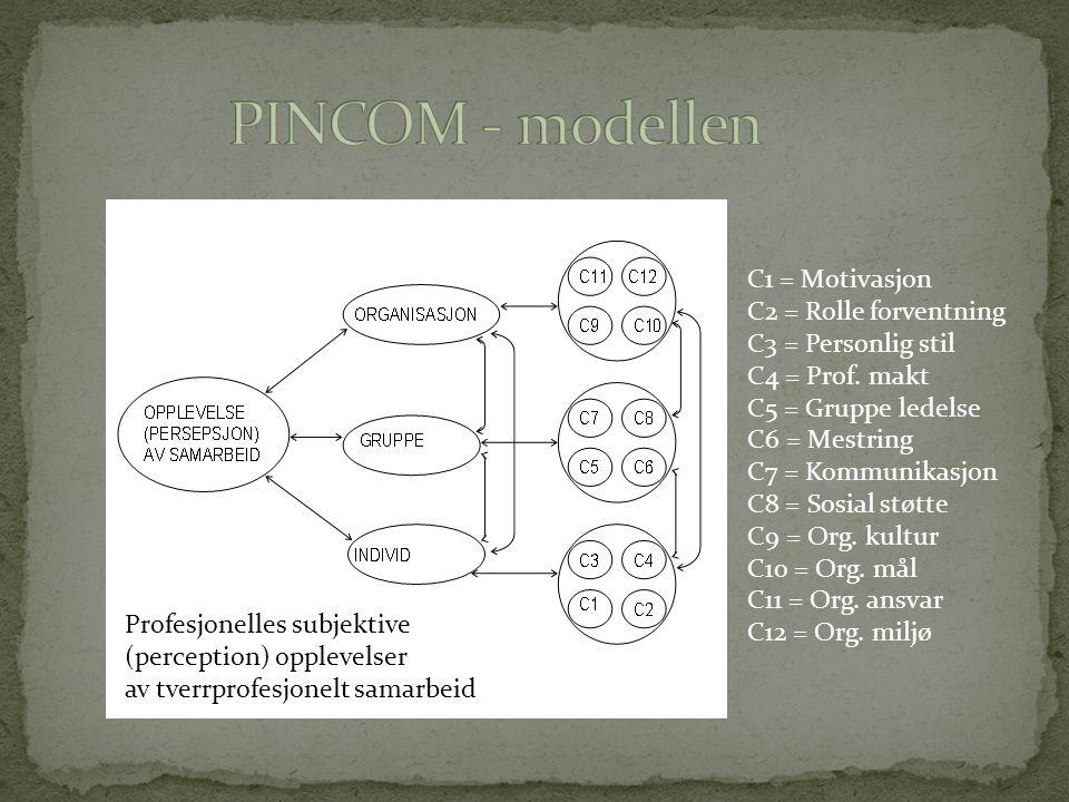 C1 = Motivasjon C2 = Rolle forventning C3 = Personlig stil C4 = Prof. makt C5 = Gruppe ledelse C6 = Mestring C7 = Kommunikasjon C8 = Sosial støtte C9