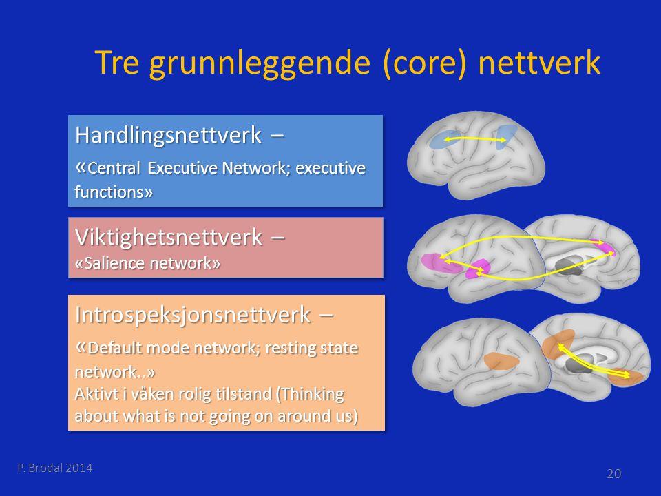 Tre grunnleggende (core) nettverk Handlingsnettverk – « Central Executive Network; executive functions» Handlingsnettverk – « Central Executive Networ