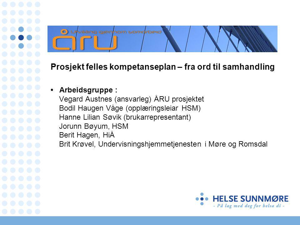 Prosjektøkonomi Helse Midt-Norge.Kr. 500.000,- er innvilget etter søknad.